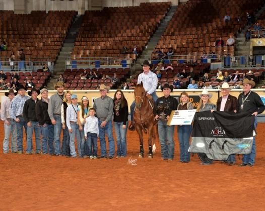 2014 Super Horse winner